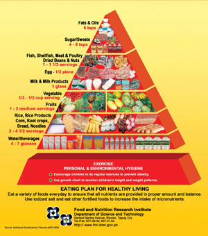 food guide pyramid for