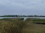 Poble Nou del Delta, des de l'altre costat de l'Encanyissada