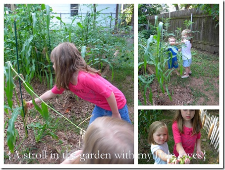 garden stroll