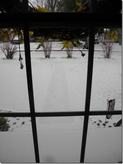 February 4, 2011 072