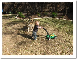 Reid & Sadie getting some work done in the yard.