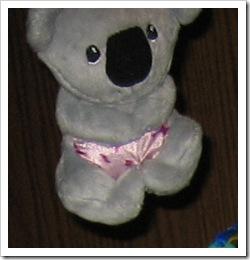 Reid's koala