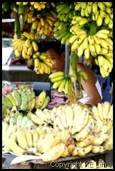Fruits vendor_3_com