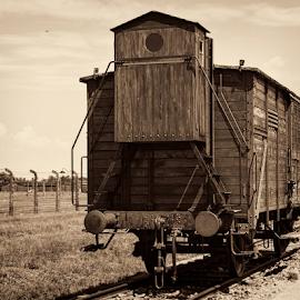 Human Transport by Ann-Kristin Heimly - Transportation Trains ( nazism, ww2, birkenau, humans, horror )