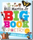Big Book of Poetry