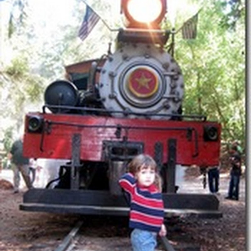 Field Trips Rock – Roaring Camp Railroad