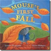 Mouse First Fall