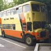 da bus WVX527X.jpg