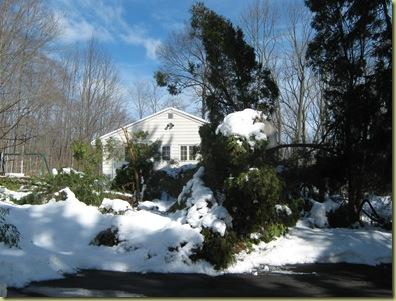 2. 26. 2010 snow 028
