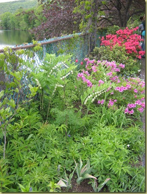 May Garden and Vav Stuga 006