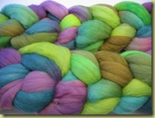 Gale Evans Grapevine roving BFL