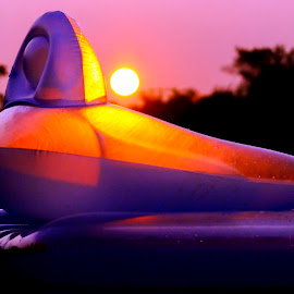 Float In Sunset by Stephanie Turner - Artistic Objects Other Objects ( peaceful, pool, colorful, sunset, floating, float )