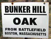 Bunker Hill Oak