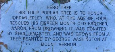 hero tree plaque