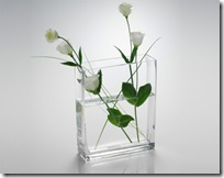 vase design rectangulaire