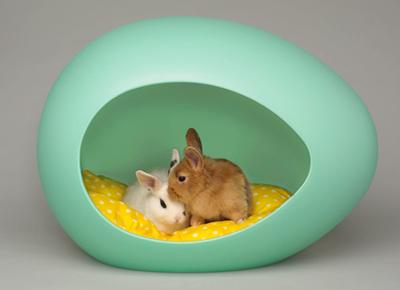 lit pour animaux