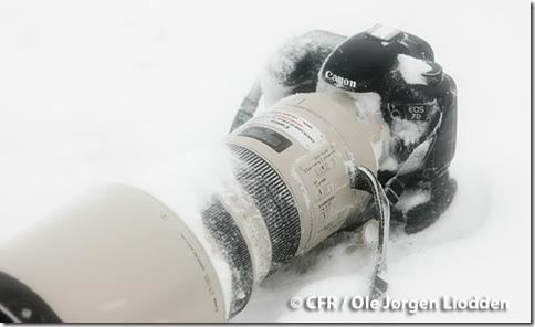 Canon 7D Snow Blizzard