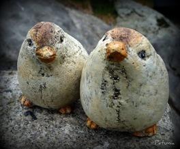 2 fugler