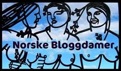 Norske Bloggdamer