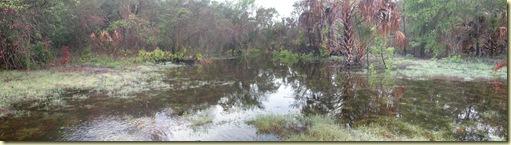 sinkhole wet II 5-14-09