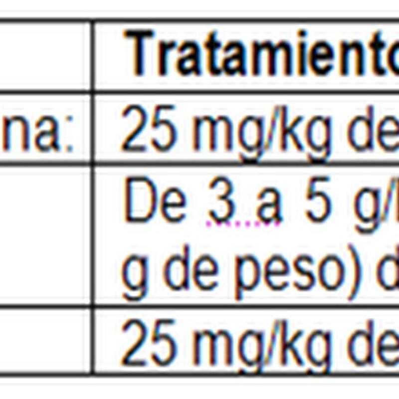 Bronconeumonía en el Cuy