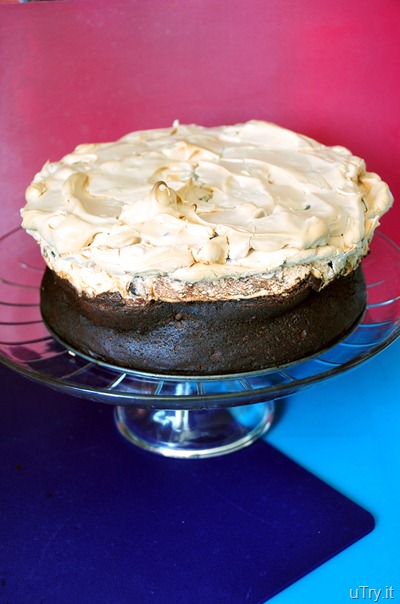 uTry.it: Chocolate and Hazelnut Meringue Cake