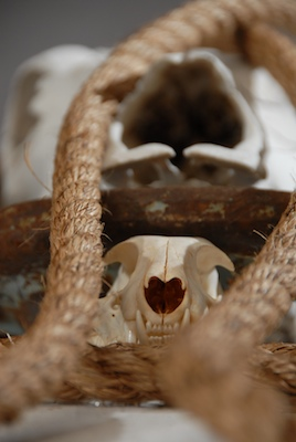 2009_Skull_Altar_II_detail_blog.jpg