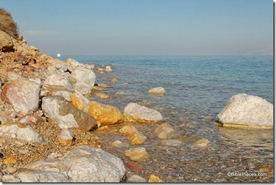 Dead Sea shore with salt crystals, tb010810100