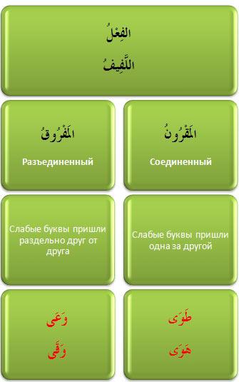 mugtal_lafif Анатомия Стра... Корня-основы! (Занимательная Сарфология, Шаг № 2)