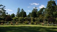The Gardens - Mount Stewart
