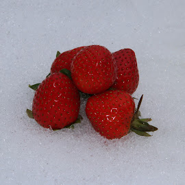 Strawberry by Anka Alstad - Food & Drink Fruits & Vegetables ( red, winter, snow, strawberry, norway )
