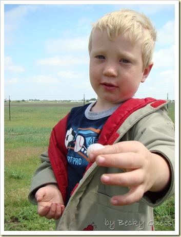 05-18-10 bird egg found 04