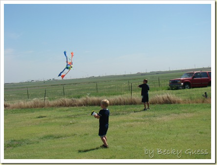 06-08-10 kite flying 05