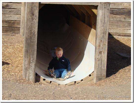 10-20-10 Zane Maxwells Farm 65