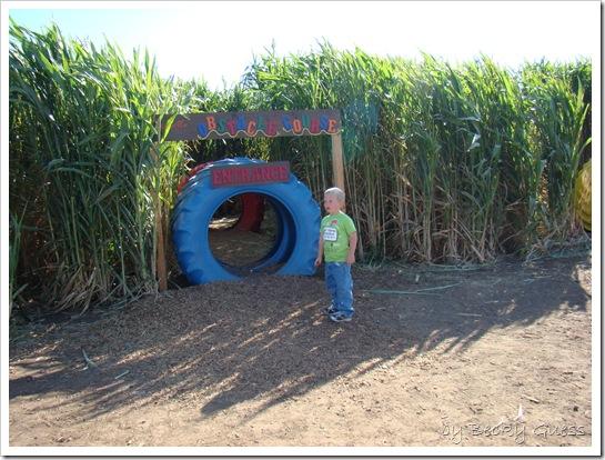 10-20-10 Zane Maxwells Farm 90