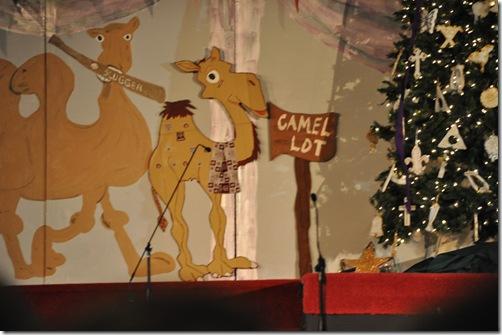 12-05-10 Camel Lot 05