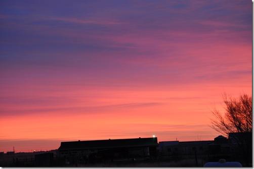 12-03-10 sunrise 04