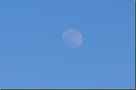 02-15-11 moon 04
