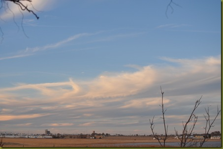 02-15-11 sky and geese 28
