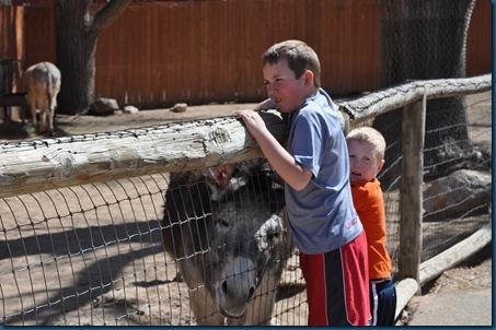03-15-11 Zoo trip 28