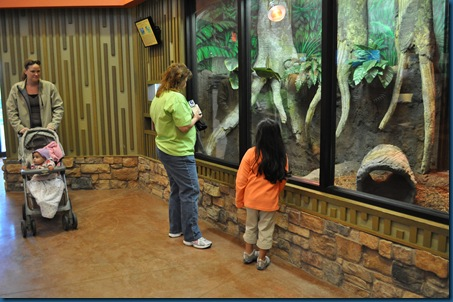 04-28-11 Zoo 006