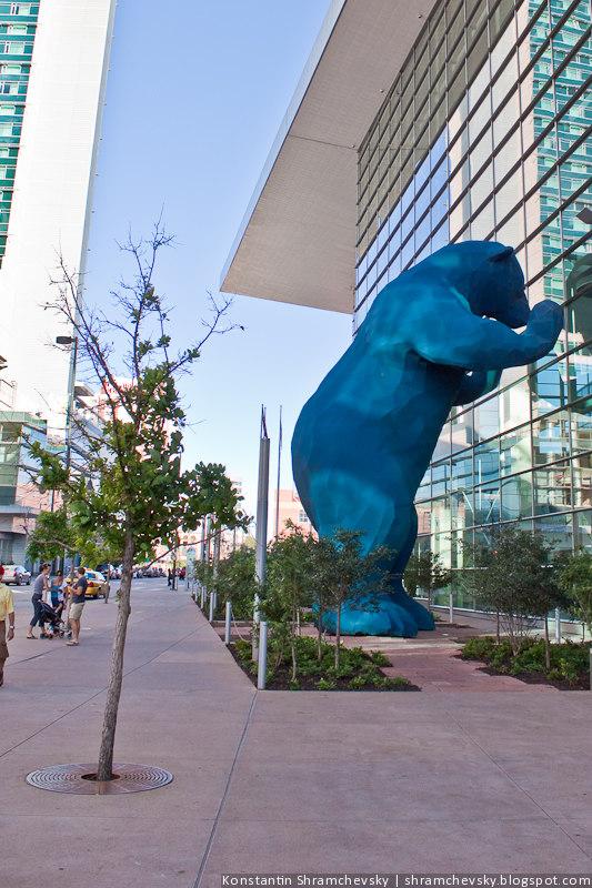 США Америка Колорадо Денвер Синий Голубой Медведь USA America Colorado Denver Blue Bear