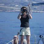 Ausschau halten nach Walen