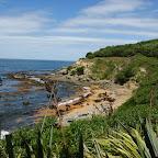 Pinguin-Beach