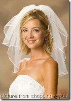 Wedding_Dresses_20100316_Wedding Veil (128)