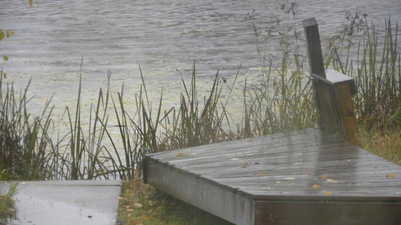 Rain Oct 6 (5)_3594 for Online