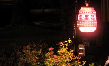 Light Neighbors UFO_391For Email.Online