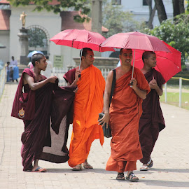 The Monks of Lanka by Sharanyan Iyengar - People Street & Candids