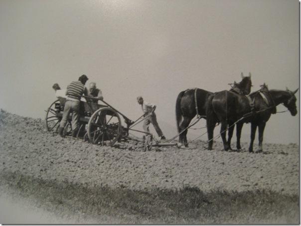 Farming Schmiedrued 153