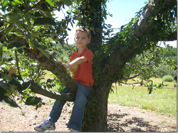 2010-09-11 911, agent, apple picking  3952